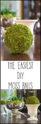 How To Make A Moss Wall by Best 10 Moss Decor Ideas On Pinterest Moss Centerpiece Wedding