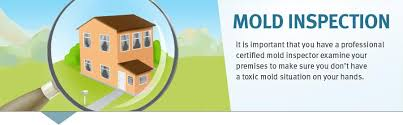 certified jersey mold removal testing and inspection services