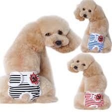 Cute Dog Products by Underwear Dog Promotion Shop For Promotional Underwear Dog On