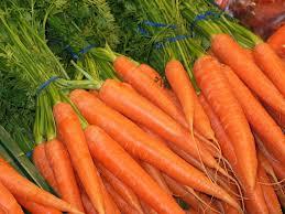 Colors Orange Colors Of The Rainbow Orange And Yellow U2013 Kid Nutrition Minute