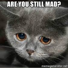 You Still Mad Meme - are you still mad sad cute cat meme generator