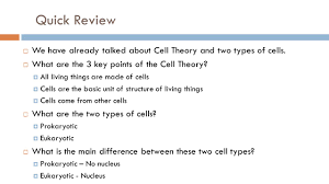 eukaryotic cell structure remember you need to write the notes