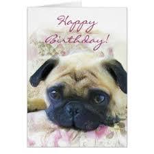 Birthday Pug Meme - fancy pug birthday meme happy birthday pug meme 80 skiparty
