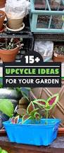 15 upcycle ideas for your garden