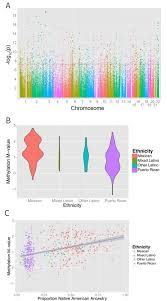 differential methylation between ethnic sub groups reflects the