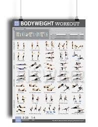 bodyweight exercise poster now laminated personal trainer