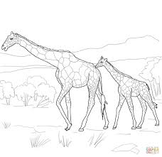mother and baby giraffe coloring page free printable coloring pages