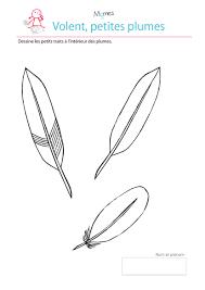 des plumes exercice de tracé à imprimer momes net