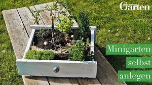 Garten Gestalten Vorher Nachher Bastelanleitung Minigarten Selbst Anlegen Youtube