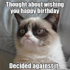 Pug Birthday Meme - happy birthday meme funny happy birthday memes pictures