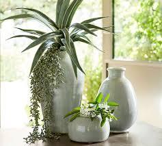 Celadon Vase Celadon Ceramic Vase Pottery Barn
