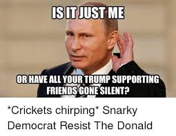 Crickets Chirping Meme - is it just me or have all your trump supporting friendsgonesilent
