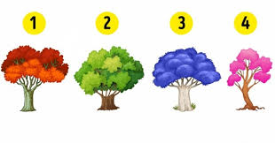 choose a tree to find out what changes you should expect in the