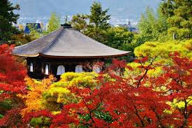 autumn 10 places fall