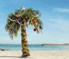 palm tree decorated for rainforest islands ferry