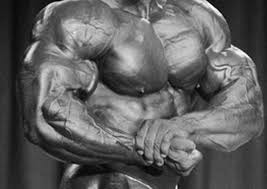 Anthony Clark Bench Press The Ultimate Chest Slay Muscle U0026 Performance