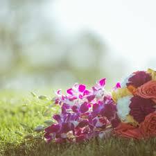 wholesale flowers denver wholesale flowers florists 50 10 49th st woodside