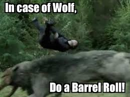 Do A Barrel Roll Meme - image 197099 do a barrel roll know your meme
