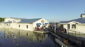 Party Cove Lake Of The Ozarks Map Lynn Creek Marina