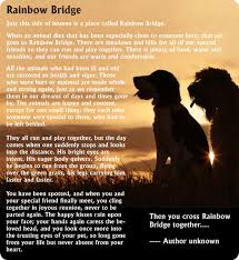 grieving loss of pet pet loss support