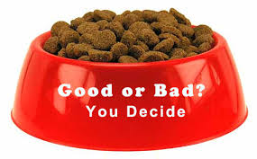 dog food review royal canin hills and burns perhaps not such a