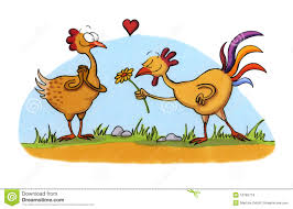 cartoon drawing of two chicken in love stock images image 10765774