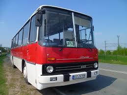 wohnplus deggendorf 50 bilder aus zwickau west bus bild de