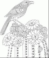 wonderful free online printable coloring pages alcatix com