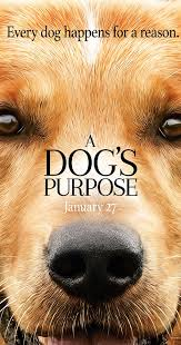 a dog u0027s purpose 2017 full cast u0026 crew imdb