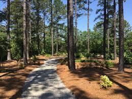 Georgia Botanical Garden by Shade Garden Path Picture Of Coastal Georgia Botanical Gardens