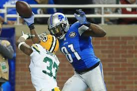 calvin johnson sets record with 15th touchdown against packers
