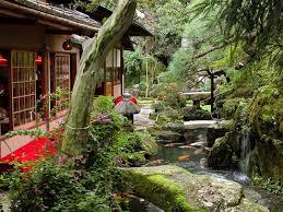 japanese garden stock photo image of green flower garden 61140