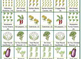 garden ideas growing vegetables square foot gardening square