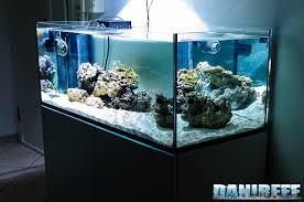 vasche acquario la pianificazione dell acquario marino quanti litri