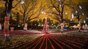 Lincoln Park Zoo Map 10 Things To Do This Holiday Weekend Nov 23 27 Chicago Tonight