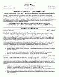 Supply Chain Management Executive Resume Cover Letter Resume Format For Supply Chain Management Resume