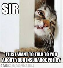 Insurance Meme - 25 insurance memes that we can absolutely relate to sayingimages com