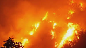 California Wildfire Cat by Raging California Wildfire Destroys Homes Near Glendora Youtube
