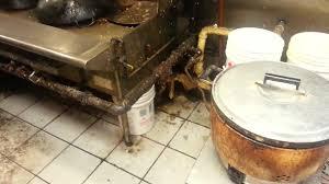 cuisine sale l effrayante saleté des cuisines d un resto chinois