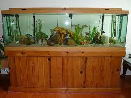 100 gallon aquarium glass thickness aquarium ideas pinterest