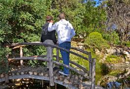 Zilker Botanical Garden Zilker Botanical Garden Austintexas Gov The Official Website