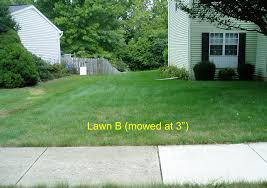 proper mowing makes a huge difference tomlinson bomberger