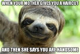 Angry Sloth Meme - sloth meme you are no match for my sloth fu photo golfian com