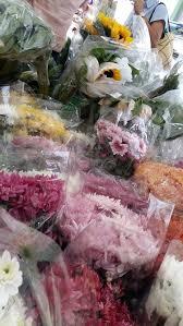 Flower Wholesale Flower Wholesale Supplier In Petaling Street