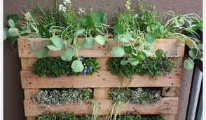 indoor herb gardens opulent ideas herb garden pots amazing design how to grow an