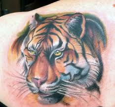 tattoo nightmares is located where gallery for tommy helm tattoo nightmares skin art pinterest