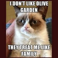 Grumpy Cat Meme Creator - tard the grumpy cat meme tard the grumpy cat meme generator