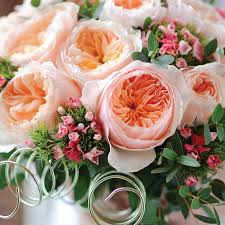 How Much Is A Dozen Roses 7 Of The Most Expensive Flowers In The World Mnn Mother Nature