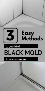 How To Prevent Black Mold In Bathroom Best 25 Black Mold In Shower Ideas On Pinterest Clean Black
