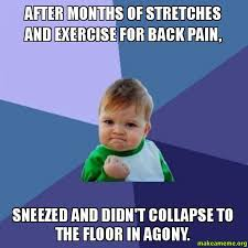 Back Pain Meme - after months of stretches and exercise for back pain sneezed and